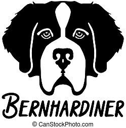 Saint Bernard head german name