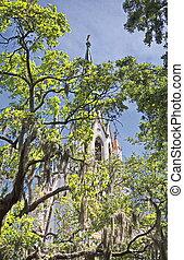 Saint John Through the Trees