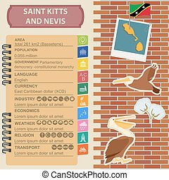 Saint Kitts and Nevis infographics, statistical data, sights. Brown pelican, cotton flower, national symbol.