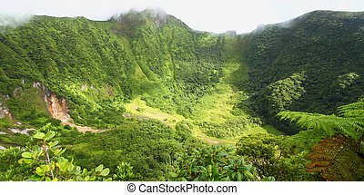Saint Kitts Crater - The Crater below cloud covered Mount ...