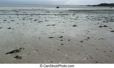 SAINT-MALO, CANCALE FRANCE - MARCH 26,2016: panorama of the coast at low tide and oyster shells