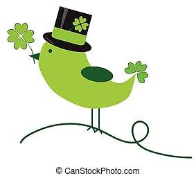 Saint Patricks Day Bird