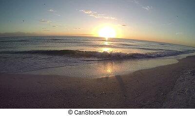 Saint Petersburg Florida Beach 5