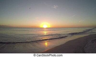 Saint Petersburg Florida Beach 6