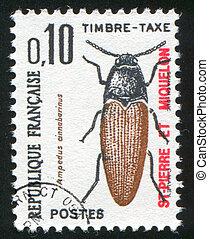 Click Beetle - SAINT PIERRE AND MIQUELON - CIRCA 1965: stamp...
