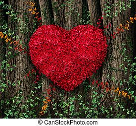 saint-valentin, feuilles rouge