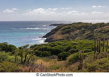 Sainte-Anne, Martinique, FWI - Ferre cape