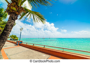 Sainte Anne shore in Guadeloupe, French west indies. Lesser Antilles, Caribbean sea