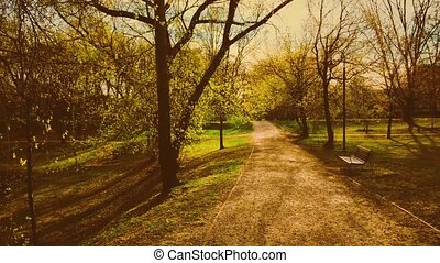 saison, automne, nature, parc, vide, banc, automne