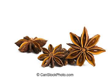 saisonnier, anis étoile, quelques-uns, fond, blanc