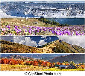 saisons, bannières, ensemble, 4, paysage