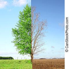 saisons, deux