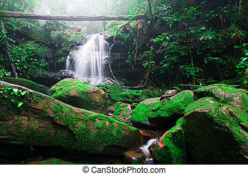 Saithip waterfall in Phu Soi Dao National Park, Thailand. A small waterfal with beautiful scenery of lush rocks and forest line