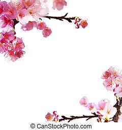sakura, 背景, すてきである