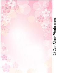 sakura, blomma, bakgrund, körsbär