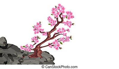 Sakura blooms. Cherry tree on a stone cliff in the mountains. illustration