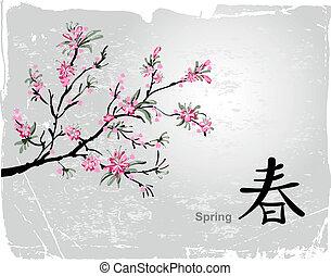 Sakura blossom - Japanese painting of flowers, background...