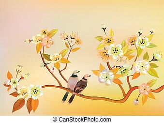 sakura, cartolina, bird.