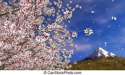 Sakura cherry blossom falling petals and Mt Fuji 4K