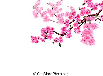 Sakura. Cherry branches with purple flowers flutter in the wind. Focused and not. Vector illustration