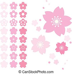 Sakura Cherry Flower