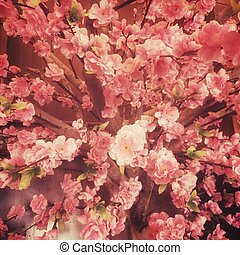 Sakura fack flower vintage stye.