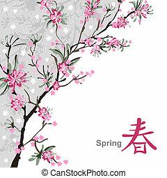 sakura, flor
