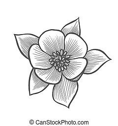 Sakura flower illustration line pattern. Vector artwork....