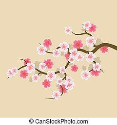 Sakura Flowers Background. Cherry Blossom Vector