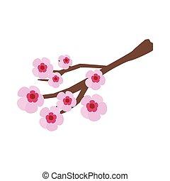 Sakura icon, isometric 3d style