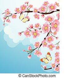 sakura - Vector illustration -  cherry blossom