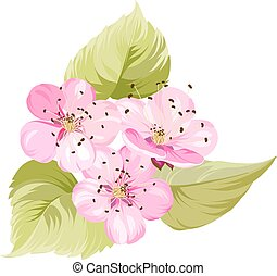 Sakura japan cherry branch with blooming. Cherry blossom. Blossom branch of pink sakura flowers. Japanese cherry tree. Beautiful pink cherry blossom flowers. Greeting or invitation card. Vector illustration