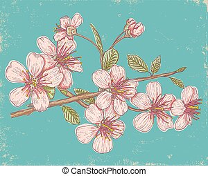 Sakura on blue background.