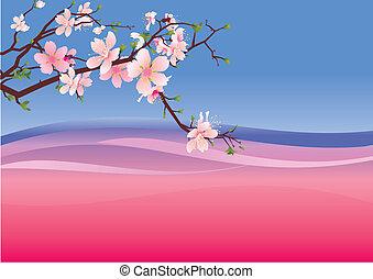 sakura, rózsaszínű, ibolya, háttérfüggöny