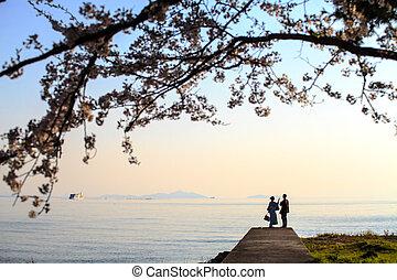 sakura season in Japan - Shiga Prefecture, Japan - April 13...