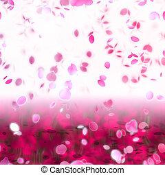 sakura, snöfall, petals, abstrakt, bakgrund