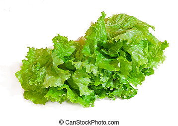 salad isolated on white