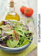 Salad mix with arugula, radicchio and lamb's lettuce in bowl...