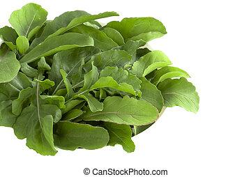 Salad Rocket leaves - Rucola