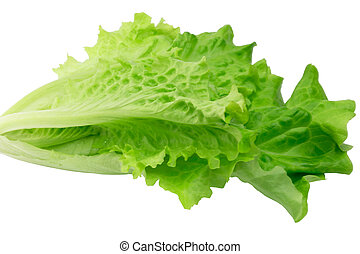 salade verte, isolé, blanc, fond, eco, manière vivre saine