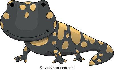 salamandra, ilustración
