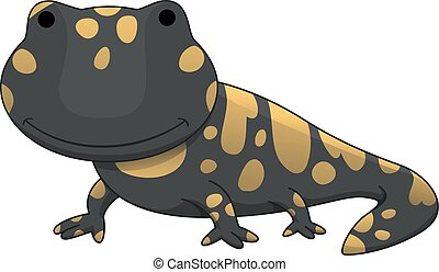 salamandre, illustration