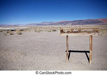 salar, argentine, campo, antofalla, atacama, ojos, de,...