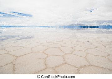 salar, de, uyuni, 鹽湖, 在, 玻利維亞