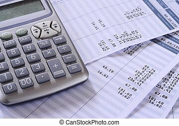 Salary payroll detail - Close up of payroll summary detail ...