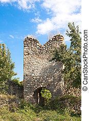 Salasu de Sus Fortress