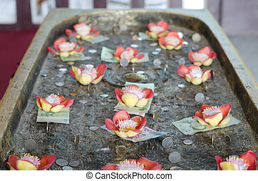 Salavan flower and Thai money at Buddhakaya Chedi, ...