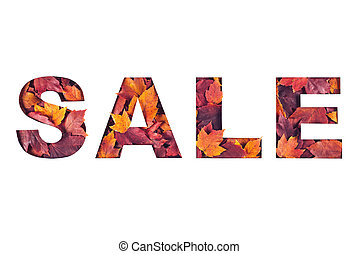 sale text filled with texture of yellow and red fall maple leaves