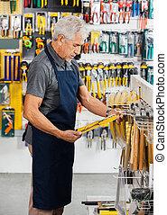 Salesperson Working In Hardware Store