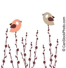 salgueiro, pussy, ramos